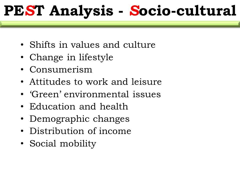 socio cultural analysis