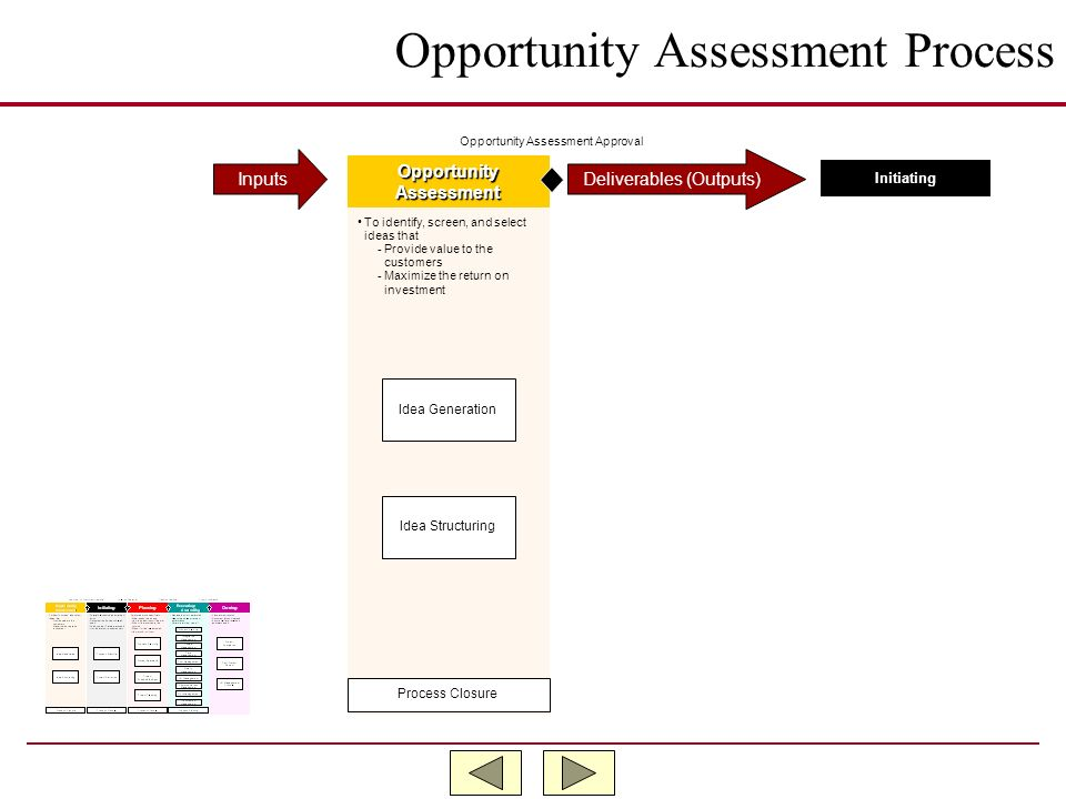 Opportunity Assessment Process