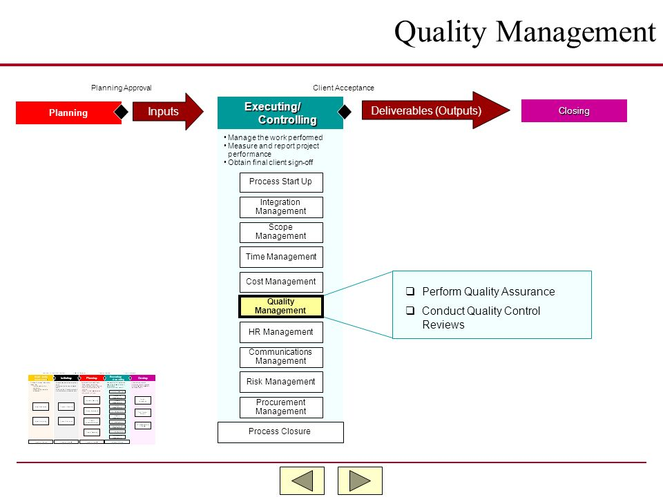 Quality Management Inputs Executing/ Deliverables (Outputs)