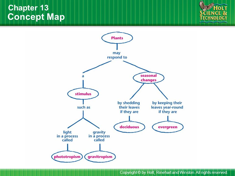 How To Use This Presentation Ppt Download