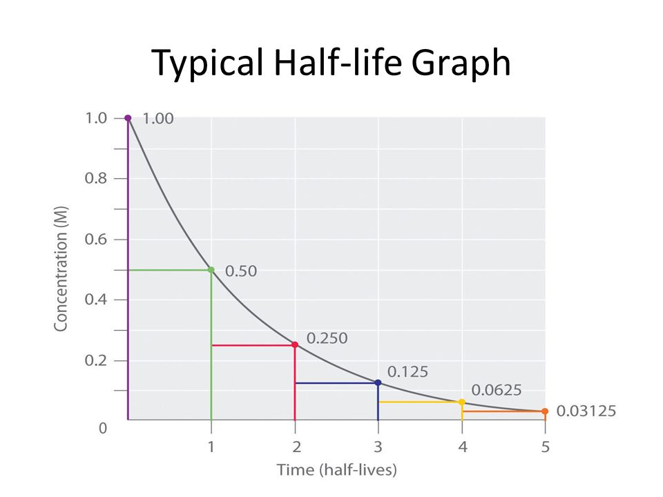 18 Typical Halflife Graph: Half Life Graph Worksheet Answers At Alzheimers-prions.com