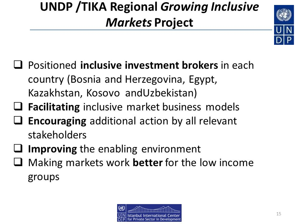 UNDP /TIKA Regional Growing Inclusive Markets Project