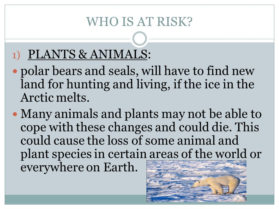 WHO IS AT RISK PLANTS & ANIMALS:
