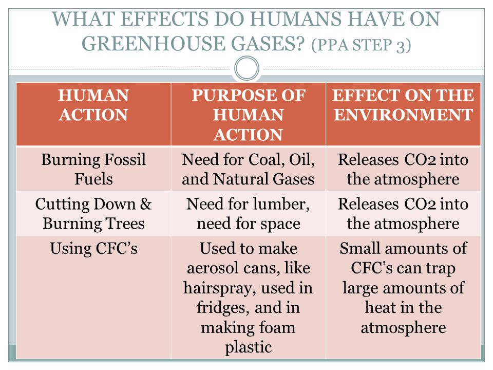 WHAT EFFECTS DO HUMANS HAVE ON GREENHOUSE GASES (PPA STEP 3)
