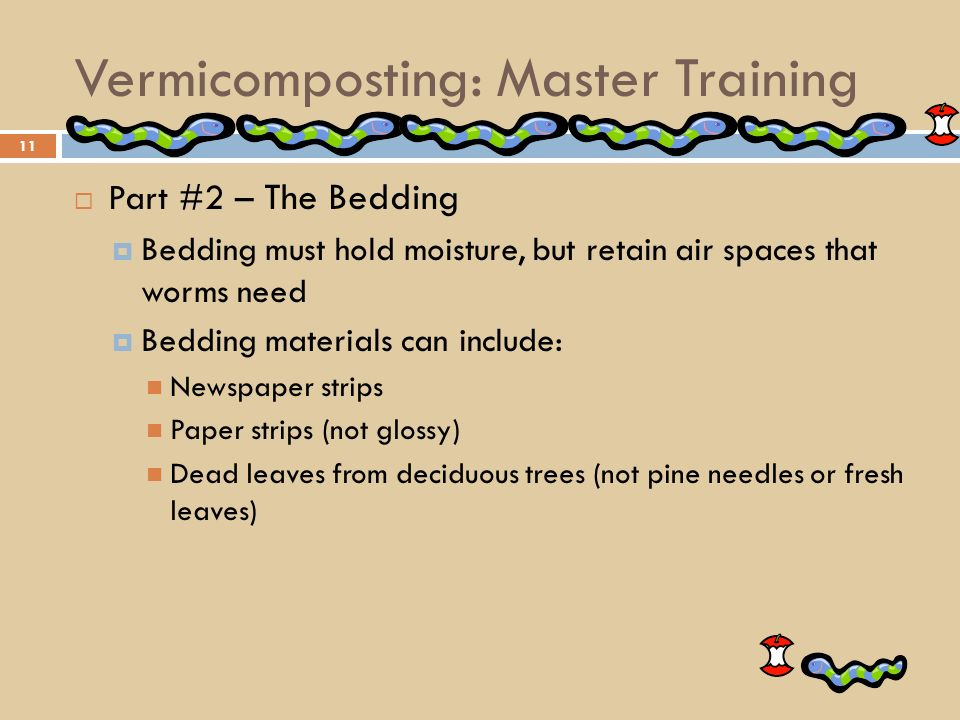 Vermicomposting Master Training For City Volunteers Ppt Video