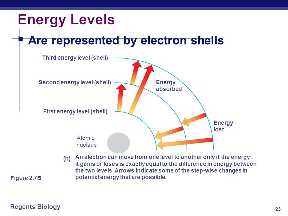 Energy Levels Are represented by electron shells