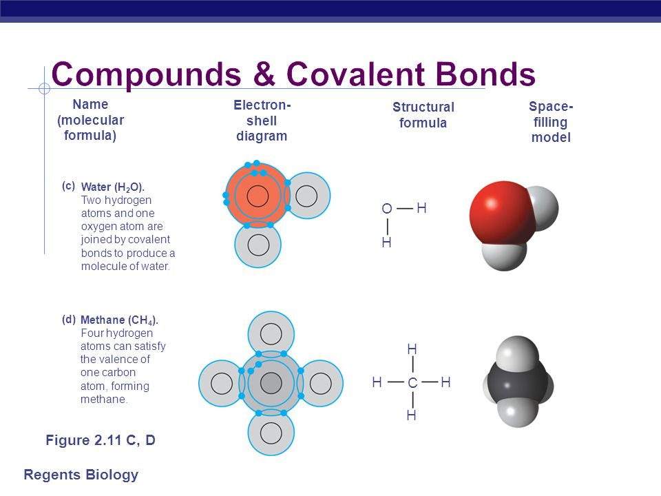 Compounds & Covalent Bonds