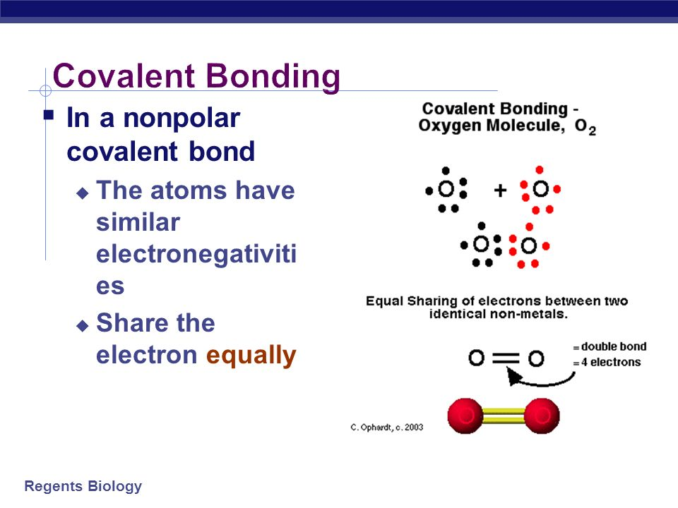 Covalent Bonding In a nonpolar covalent bond
