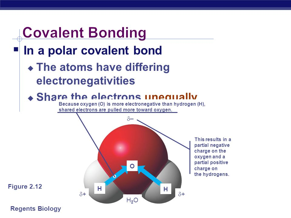 Covalent Bonding In a polar covalent bond