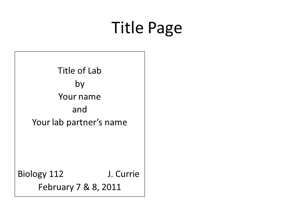 your lab partners name