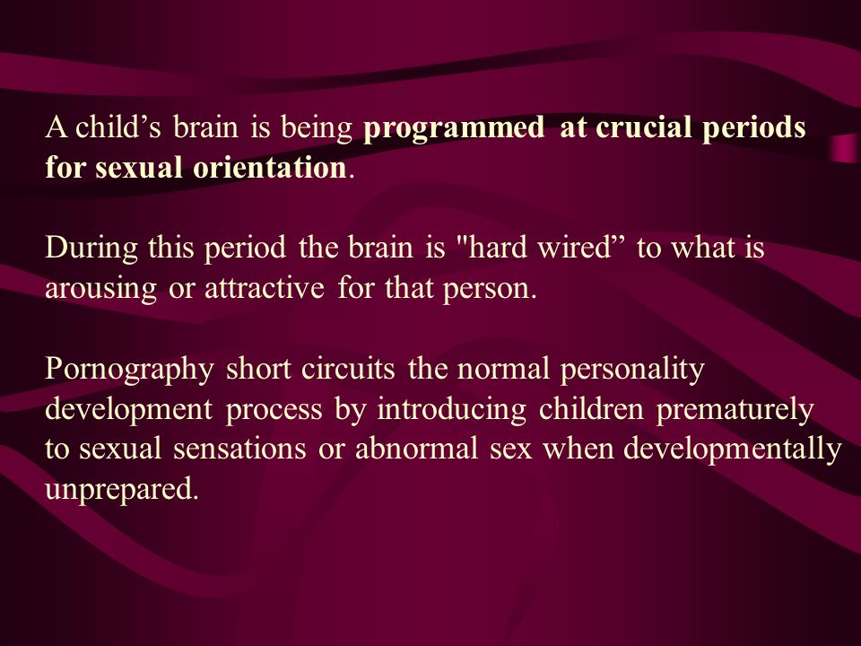 A child's brain is being programmed at crucial periods for sexual orientation.