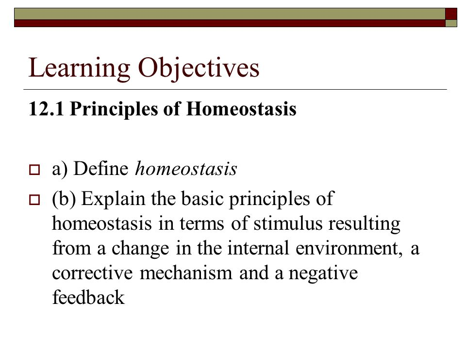 Learning Objectives 12.1 Principles of Homeostasis