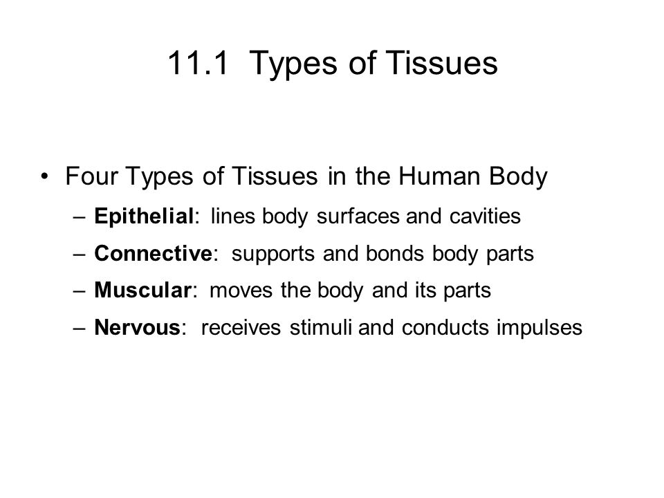 Biology 1308, Chapter 11 – Part 1 Chapter 11 is the introduction to ...