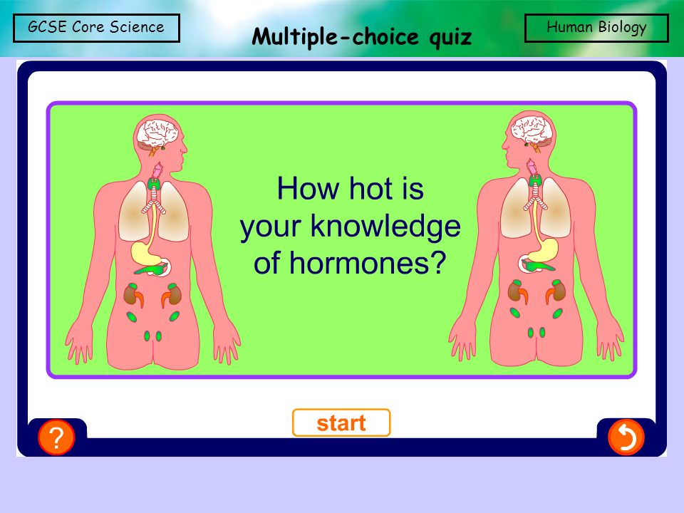 Multiple-choice quiz Multiple-choice quiz