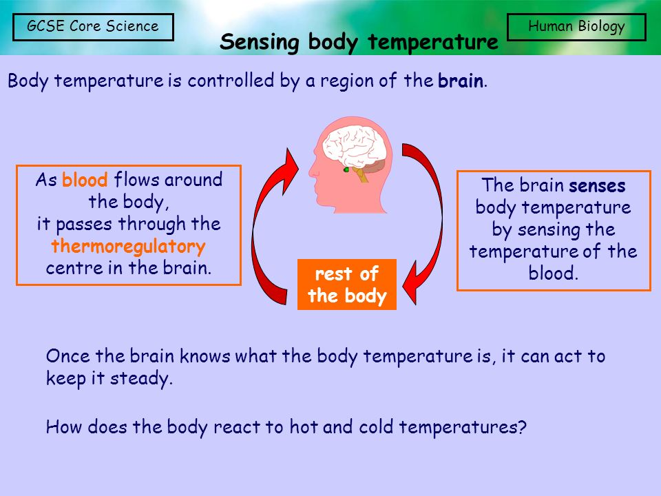 Sensing body temperature