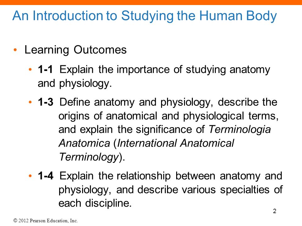 1 Lecture An Introduction To Anatomy And Physiology Ppt Download