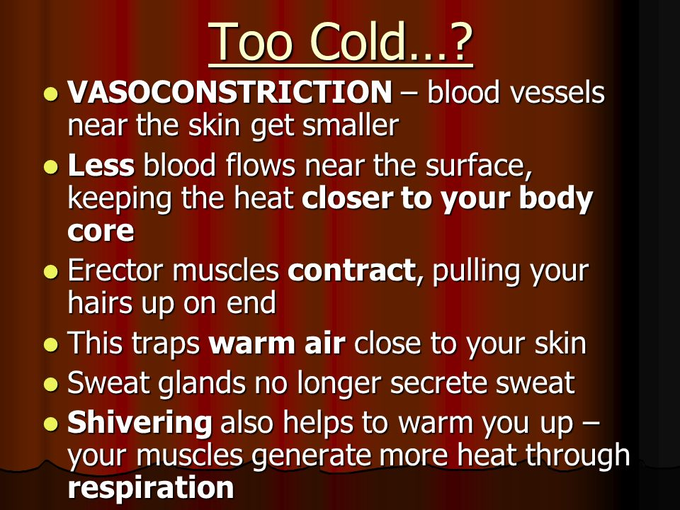 Too Cold… VASOCONSTRICTION – blood vessels near the skin get smaller