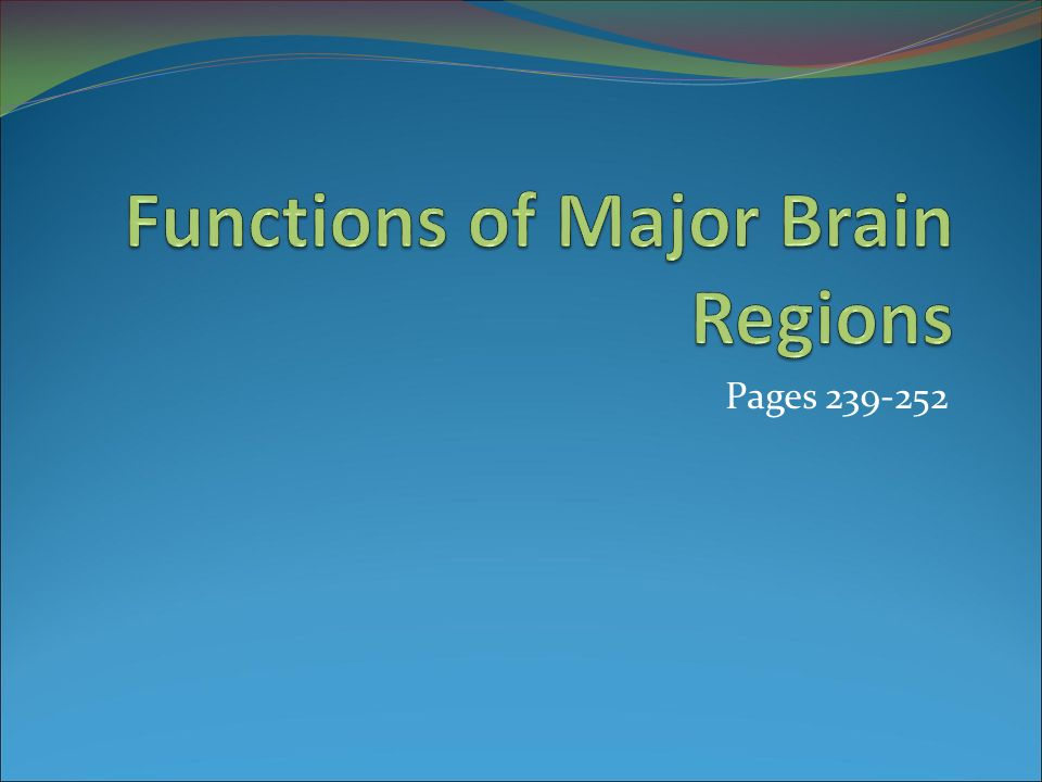 Functions of Major Brain Regions