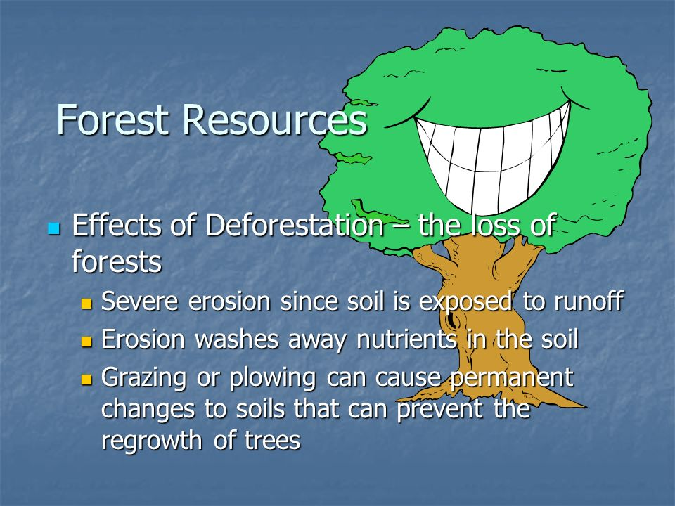Forest Resources Effects of Deforestation – the loss of forests