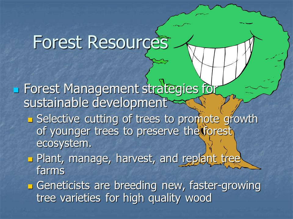 Forest Resources Forest Management strategies for sustainable development.