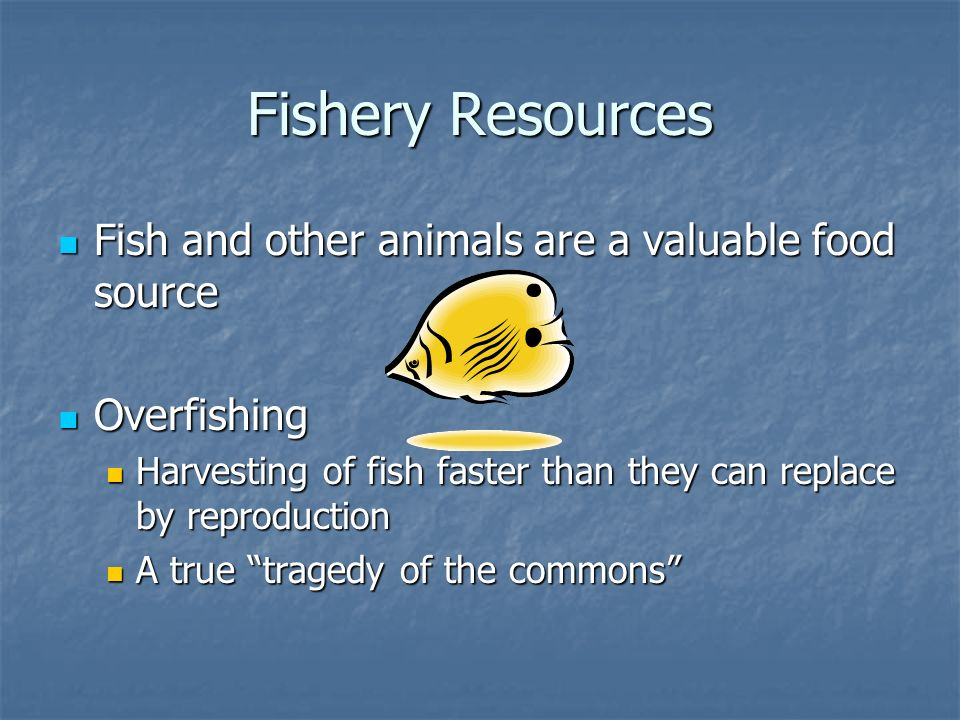Fishery Resources Fish and other animals are a valuable food source