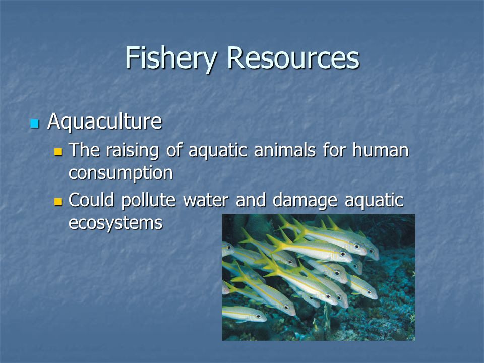 Fishery Resources Aquaculture