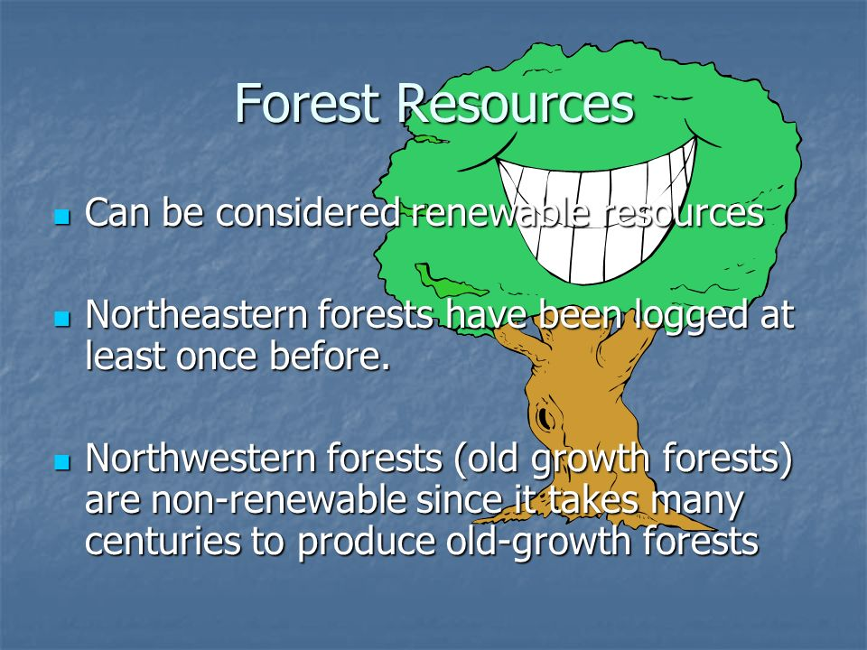 Forest Resources Can be considered renewable resources