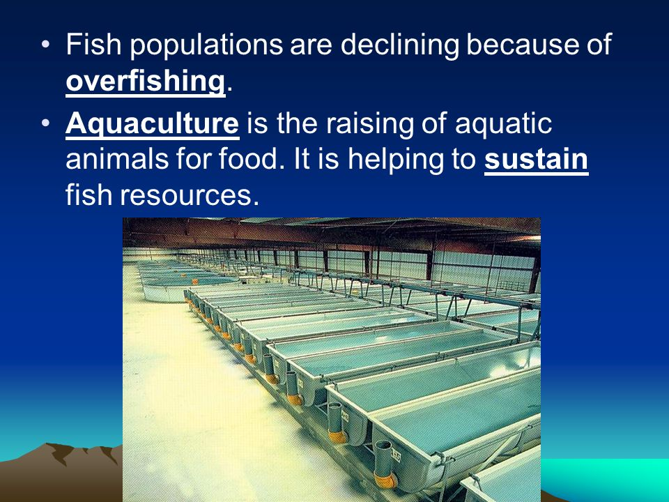 Fish populations are declining because of overfishing.
