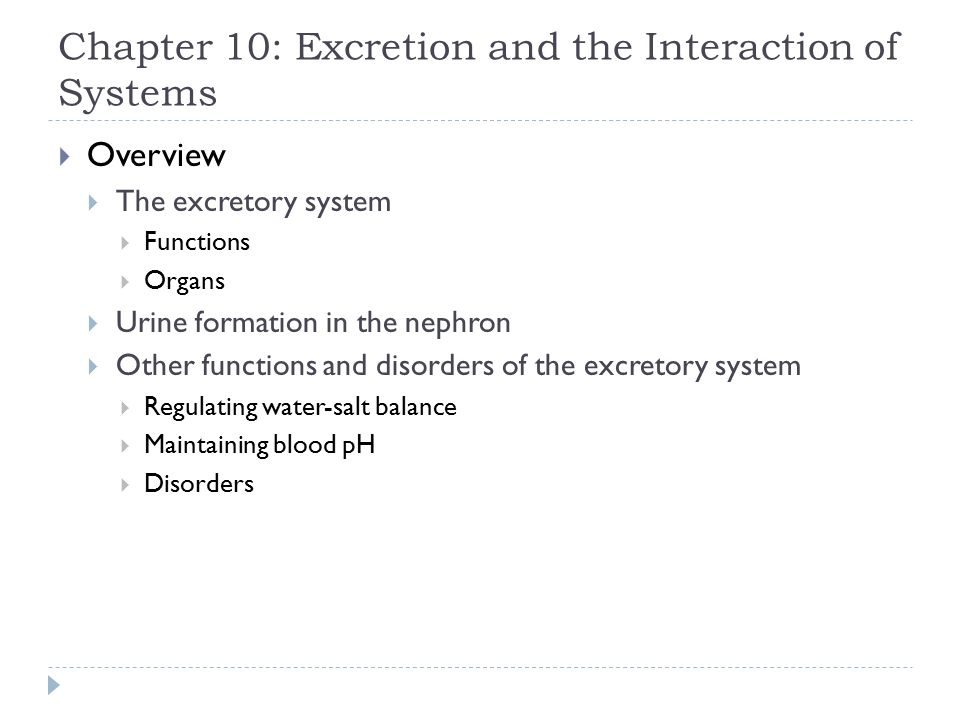 Chapter 10: Excretion and the Interaction of Systems - ppt download
