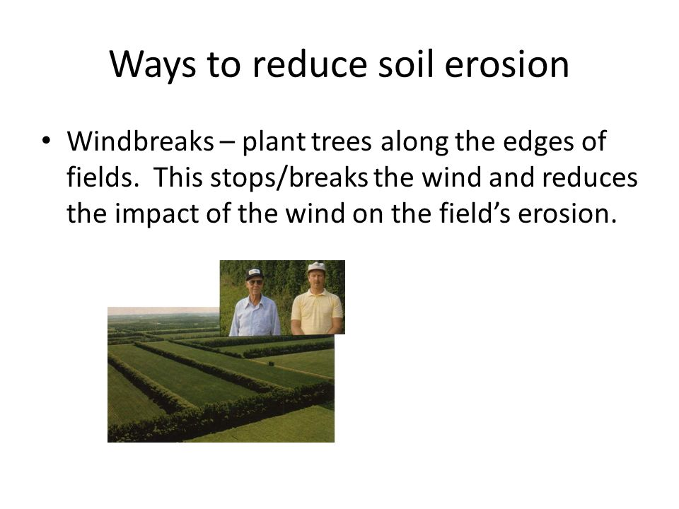 Ways to reduce soil erosion