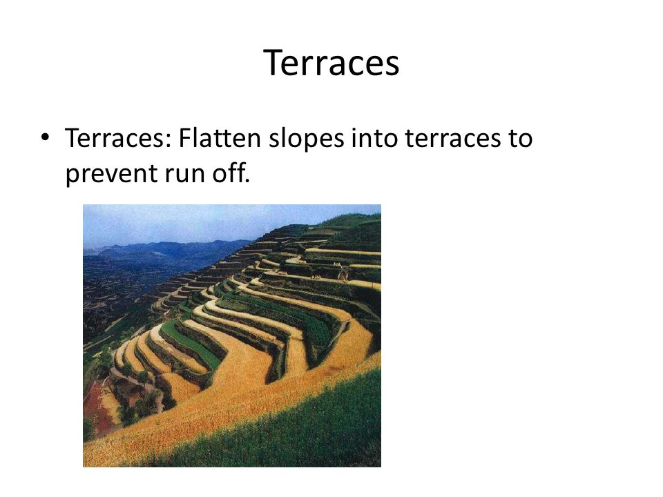 Terraces Terraces: Flatten slopes into terraces to prevent run off.