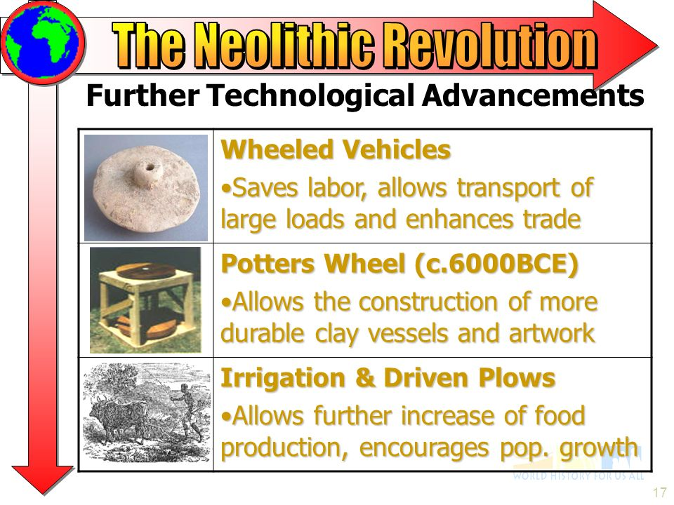 neolithic rev