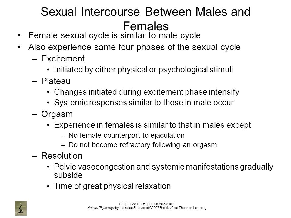 Sexual intercourse pictures of male and female