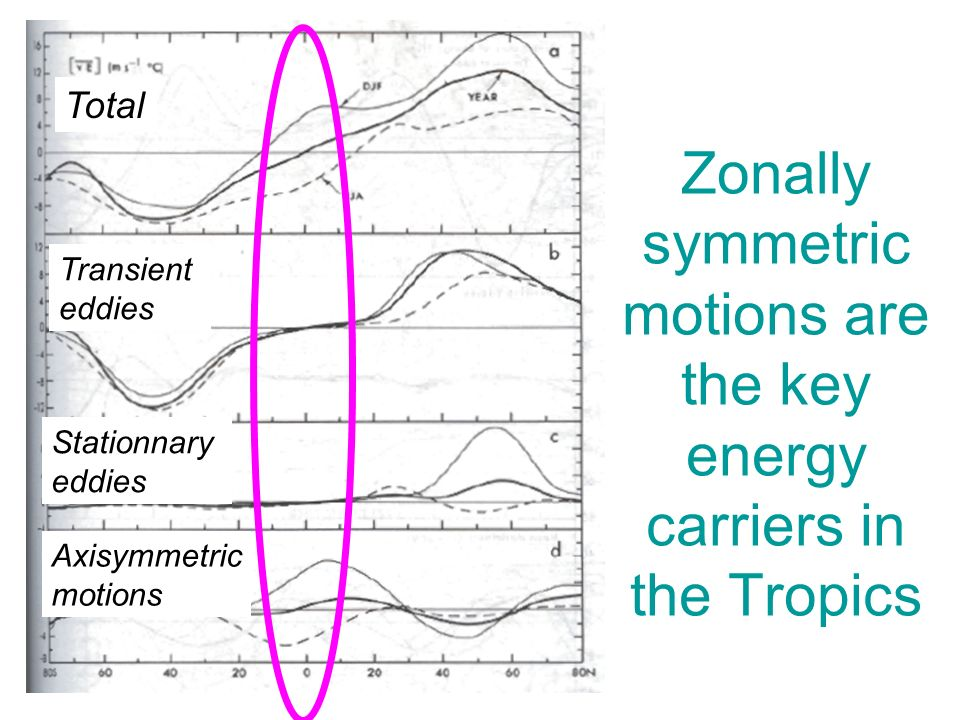 Zonally symmetric motions are the key energy carriers in the Tropics