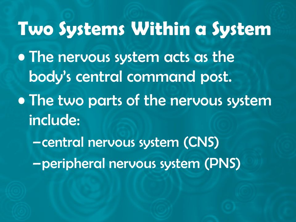 Two Systems Within a System