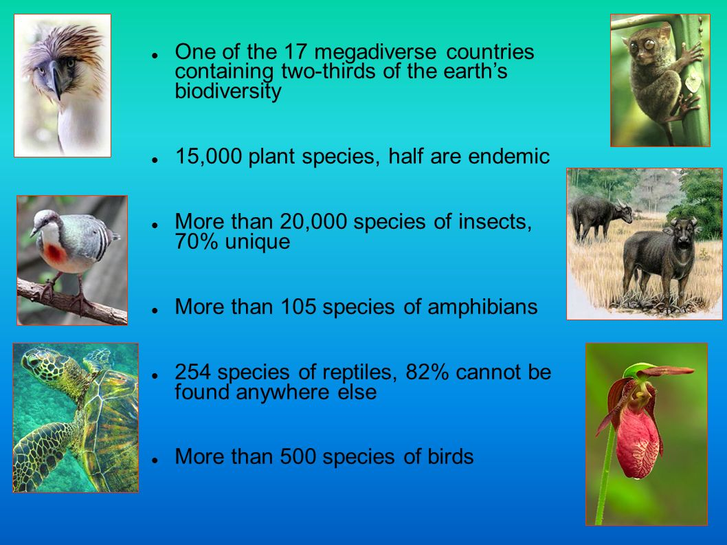 One of the 17 megadiverse countries containing two-thirds of the earth's biodiversity