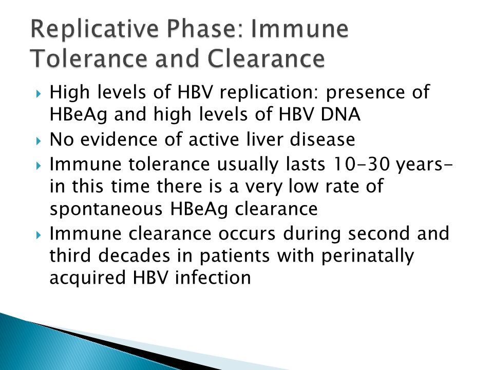 Replicative Phase: Immune Tolerance and Clearance