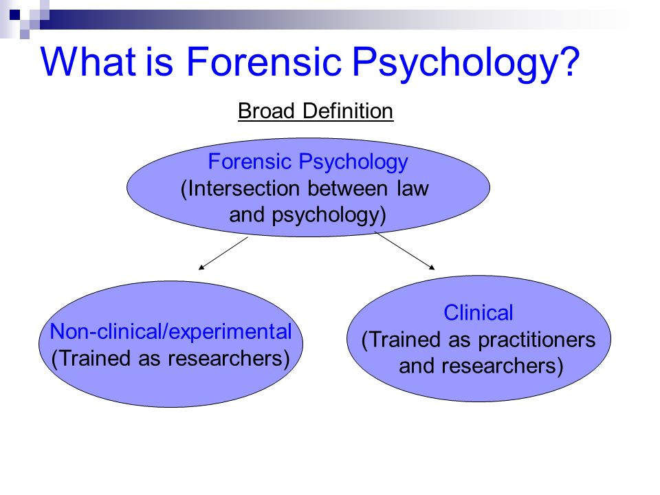 Introduction To Psychology And Law Civil And Criminal Applications Ppt Download