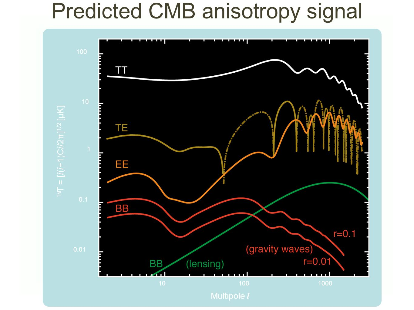 Predicted CMB anisotropy signal
