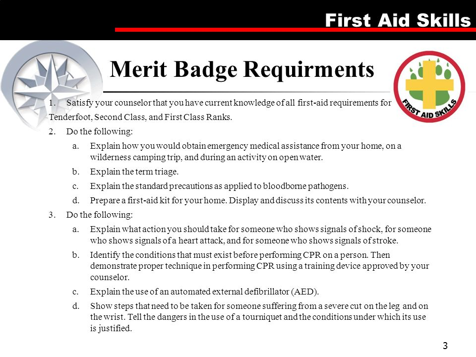 First Aid Merit Badge Point The