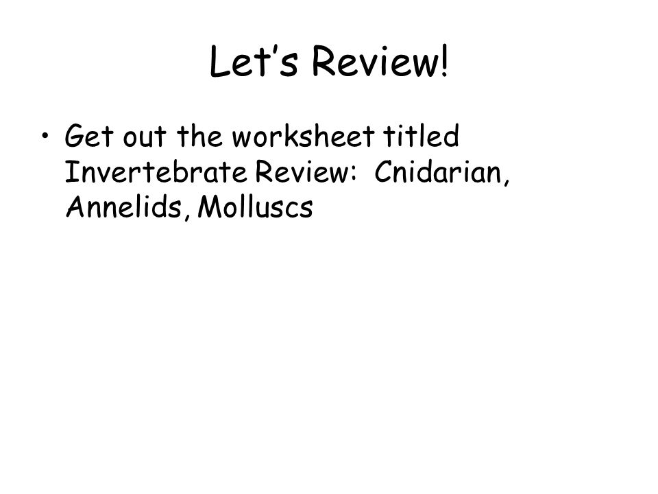 Chapter 29 Mollusks And Annelids Ppt Video Online Download. Get Out The Worksheet Titled Invertebrate Review Cnidarian Annelids Molluscs. Worksheet. Mollusks Worksheet Answer Key At Mspartners.co