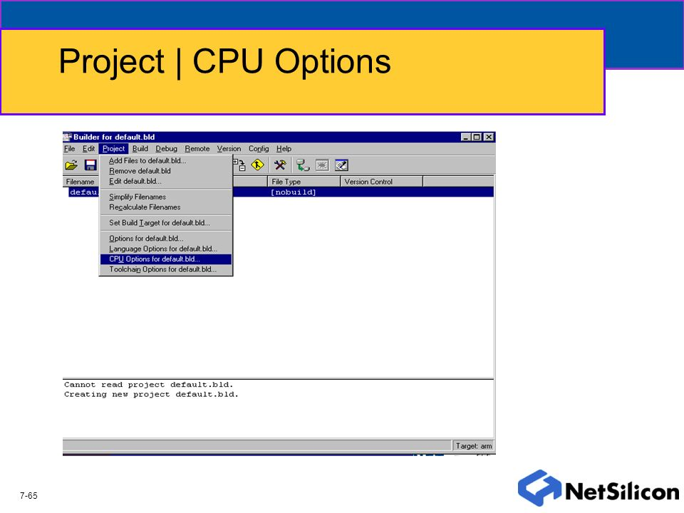 Project | CPU Options 7-65
