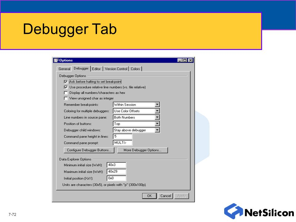 Debugger Tab The Debugger tab allows the users to control the performance and operation of the built in debugger.