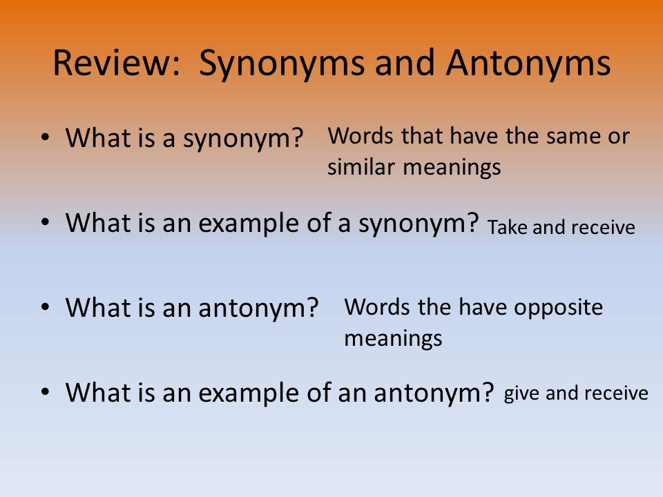 example of opinion essay write ppt