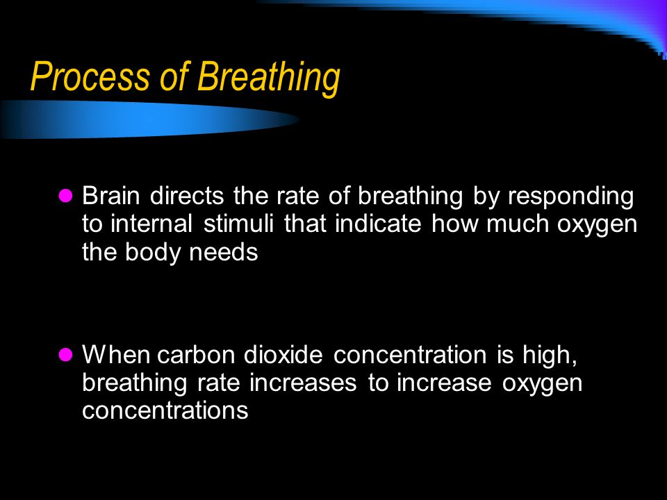 Process of Breathing Brain directs the rate of breathing by responding to internal stimuli that indicate how much oxygen the body needs.