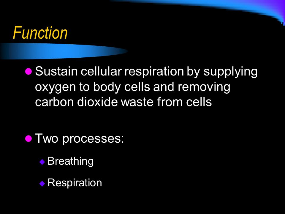 Function Sustain cellular respiration by supplying oxygen to body cells and removing carbon dioxide waste from cells.