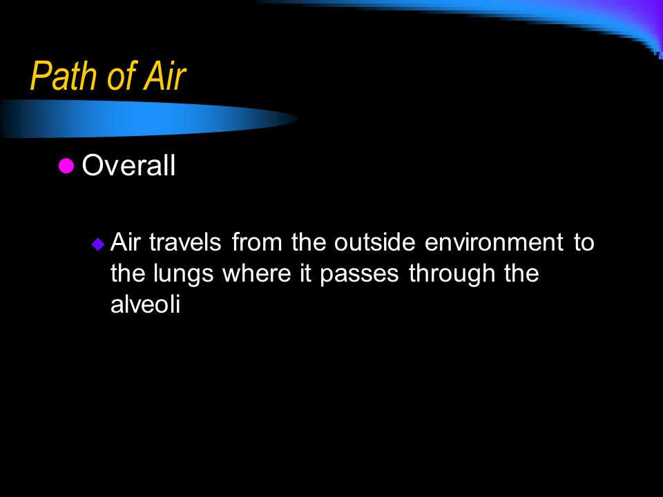 Path of Air Overall.