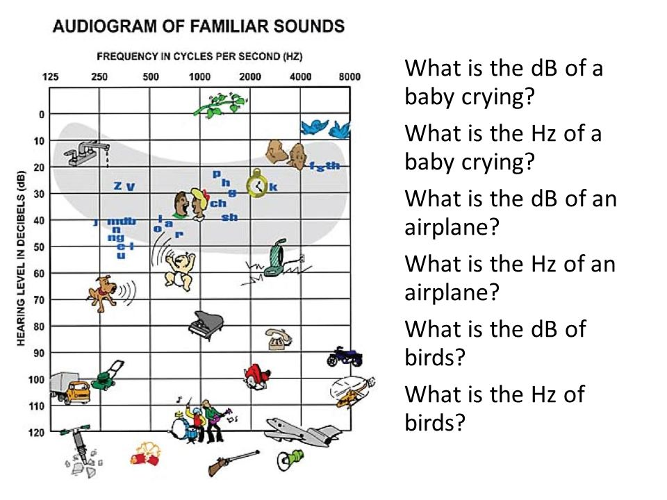 What is the dB of a baby crying. What is the Hz of a baby crying
