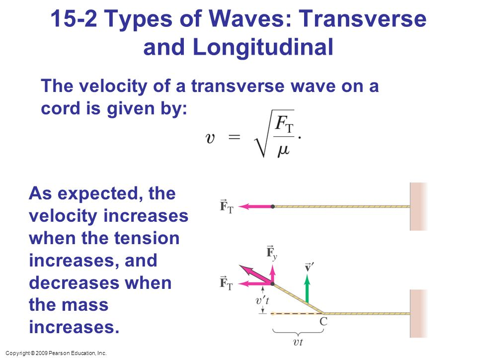 15-2 Types of Waves: Transverse and Longitudinal