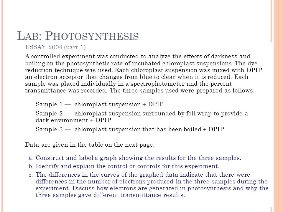 Ap Biology Lab Review  Ppt Video Online Download Lab Photosynthesis Essay  Part